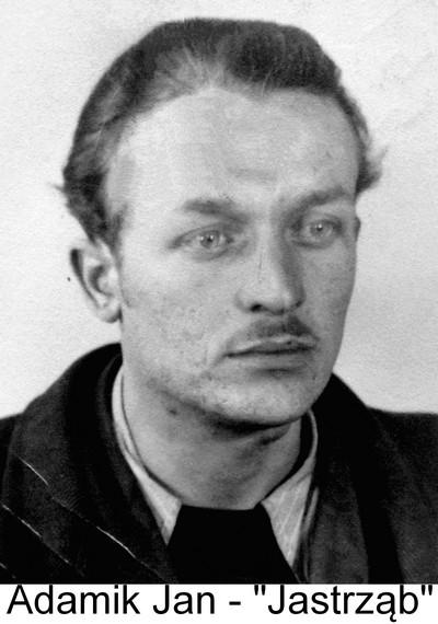 Adamik Jan - Jastrząb