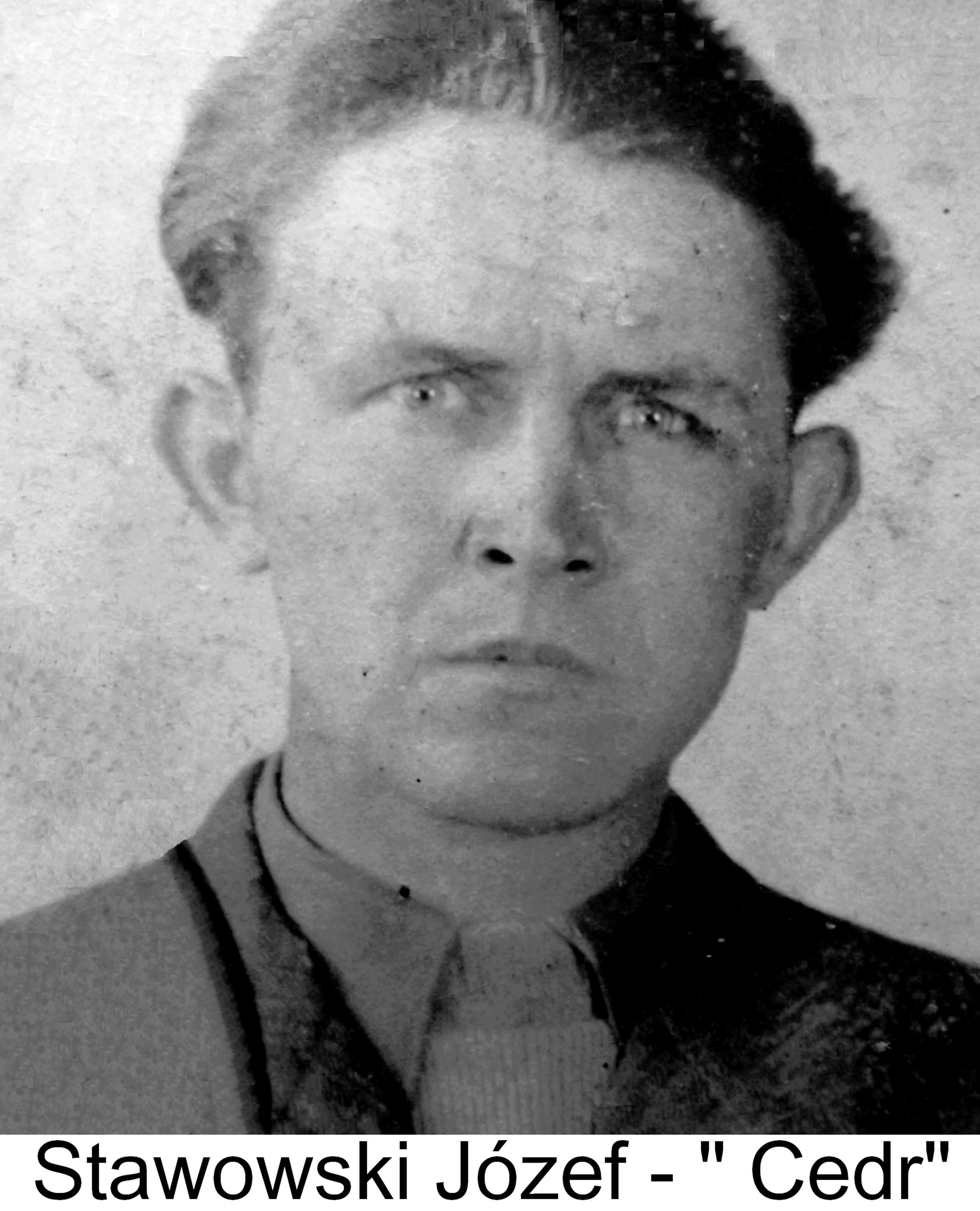 Stawowski Józef - Cedr