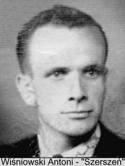 Wiśniowski Antoni - Szerszeń